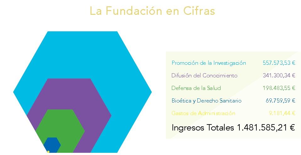 La Fundación en Cifras 2015